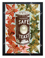 Historic Warner's Safe Yeast  Advertising Postcard 1