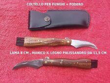 Lagiuole Coltello Raccolta Funghi