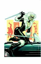 AMANDA CONNER BLACK CAT & SPIDER-MAN ART PRINT / SIGNED BY THE ARTIST