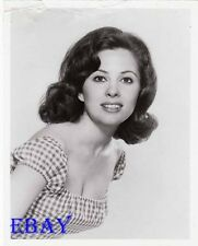 Barbara Parkins Peyton Place VINTAGE Photo