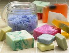How To Make SOAP CANDLES  BATH SALTS DEODORANT Detergent Prepper CD 63+ Books