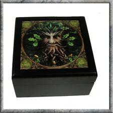 OAK KING TREE MAN GREEN MAN JEWELLERY TRINKET BOX NEMESIS NOW NEW AND BOXED