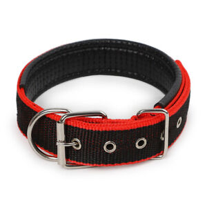 Dog Collar Padded Eyelet Nylon Metal Pet Puppy Cat Adjustable Collars UK Stock