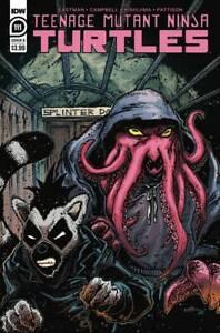 Teenage Mutant Ninja Turtles #111 Cover B NM- 1st Print IDW Comics