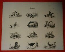 Lithographie - Animaux - Chasse - Victor Adam - n°1