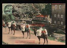 More details for turkey smyrna chameaux pres l'aqueduc du prophete elie postcard 1911 - t164