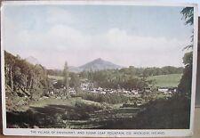 Irish Postcard SUGARLOAF & ENNISKERRY Powerscourt Girl Guide Cottage 1950s 4x6