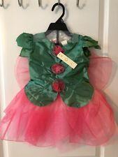 Girls Size 4T, Fairy Costume, 4 Piece Set, Halloween, Dress Up, New