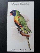 No.28 SWAINSONS LORIKEET - Aviary and Cage Birds by John Player 1933
