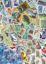 Collection 100 diff. stamps - Vissen / Fish / Fische (Y1011.C)