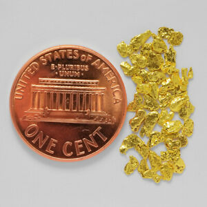 0.9936 Gram Alaska Natural Gold Nuggets --- (#62088-14) - Alaskan Gold Nuggets