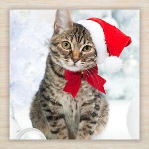 Cat Christmas Cards & Packs - Tabby Cat Kitten Santa Paws *Fast FREEPOST*