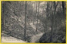 cpa 92 - FONTENAY aux ROSES La FOSSE BAZIN Arbres Forêt Sentier Chemin Forestier