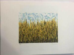 Mario Schifano litografia cm 50x70 timbro fondazione