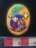 Vtg 1975 BSA Boy Scouts EXPO 75 Patch 70ZZ