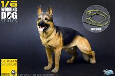 TOYSCITY TC-M9007 1/6 Work Dog Series German Shepherd Model Figure Decoration