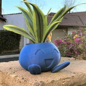 Flower Succulent Flower Pot Plant Succulent Pot Planter Pot Planter Oddish Flowe