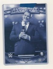 2016 WWE Topps Authority Perspectives 5x7 1/1 Exclusive Kane