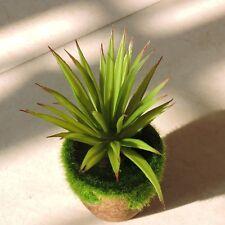 Lifelike 4pcs Artificial Century Succulent Plant Christmas Home Decor Green