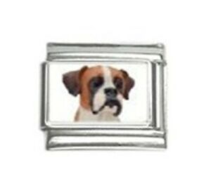 9mm Classic Size Italian Charms C7 Dog Dogs Boxer