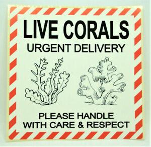 LIVE CORALS WITH CARE Labels  Stickers LARGE 100x100mm Aquarium Pets PPI-LIV-CO