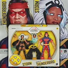 Storm and Thunderbird 2 Pack Marvel Legends Exclusive 20th Anniversary
