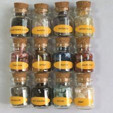 12Mini Gemstone Bottles Chip Crystal Healing Tumbled Gem Reiki Wicca Stones Set
