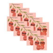 True Gum - 10x 21g Plastikfreie Kaugummi - Himbeere & Vanille - 100% Biologisch