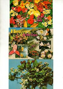 POSTCARDS – 9 COLOUR POSTCARDS OF FLOWERS (POSTED & UNPOSTED)