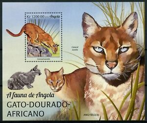 Angola Wild Animals Stamps 2019 MNH African Golden Cat Big Cats Fauna 1v M/S