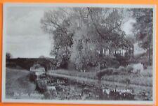 R.A.P.Co Postcard c.1935 THE CANAL HALBERTON Nr TIVERTON DEVON