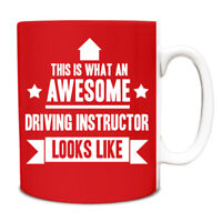 This is what an AWESOME Driving Instructor Looks like Mug Gift idea cup 068