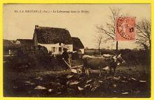 cpa 44 - LABOUREUR en BRIÈRE (Loire Atlantique) Attelage Charrue Marais Briéron