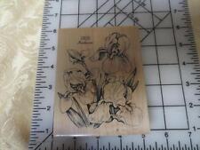 PSX K-040 K040 Bearded Iris Botanical floral flower wm rubber stamp (PH)