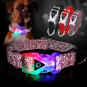 LED Dog Collar Flashing Glow Light up Safety Night Reflective Bling Pet Necklace