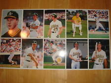 Rare Mark McGwire Uncut Sheet Rookie Cards Barry Colla
