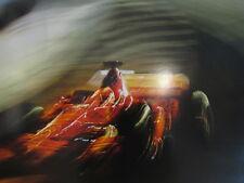 Poster Marlboro Ferrari F2004 2004 #2 Rubens Barrichello (BRA) Tunnel extra dik