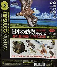 Kaiyodo Capsule Q Museum Japan Animal 7 Yaeyama Islands - (7Pcs)
