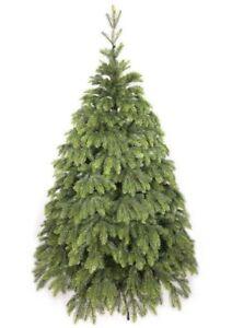 Fichte Alaska Weihnachtsbaum künstlicher Christbaum Tannenbaum x-mas tree NK18