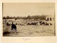 Algérie, Touggourt Vintage albumen print.  Tirage albuminé  11x16  Circa 1