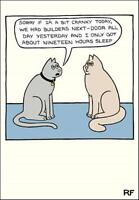 Only 19 Hours Sleep Cartoon Cat Humour Greeting Card On The Prowl Cards
