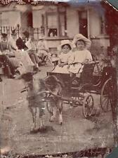 ORIG VICTORIAN Tintype / Ferrotype Photo c1860's CHILDREN ON SEASIDE GOAT CART