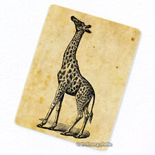 Giraffe Deco Magnet, Decorative Gift Fridge Refrigerator Antique Animal Figure