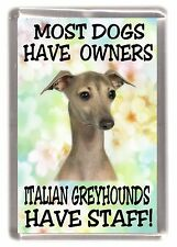 """Italian Greyhound Fridge Magnet """"Most Dogs Have Owners .... Have Staff"""""""