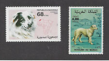 Art Body Postage Stamp MOROCCAN AIDI SHEEPDOG SHEPHERD DOG Collection of 2 MNH