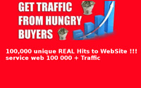 100,000 unique REAL Hits to WebSite !!! service web 100 000 + Traffic