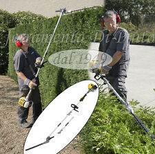 Taille-Haie à Explosion cc 25,4 mm 390 Longue cm 200 Garantie 3 Ans Extensible