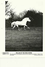 ORIGINAL 1978-BALLAD OF THE IRISH HORSE-PHOTO BY ANNE B. KEISER-DOCUMENTARY-NICE