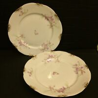 Warwick China Dinner Plates Lot Of 2  Blue Pink Flowers Gold Daubs A2002 Ex