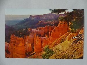 c1950s Postcard Bryce Canyon National Park UT Unposted USA